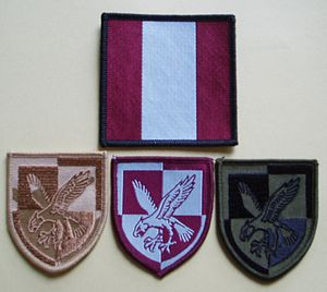 16 Air Assault Brigade