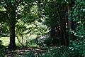 170811 Rokko Alpine Botanical Garden Kobe Japan04n.jpg