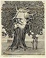 1903-Majani-Come quercia druidica sta il tuo fatal lavoro.jpg