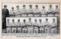1916 Buffalo Bisons.png