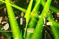 1LIVE Krone 2016 - 2015 - Show - 257ers mit der WDR Big Band-6547.jpg