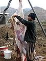 200612 Yemen-302 (354286361).jpg