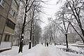 2012-12-25 Volhohradska Street, Kiev - 09.jpg