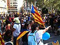 2012 Catalan independence protest (33).JPG