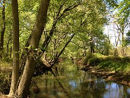2013-05-04 12 53 55 View west along the Assunpink Creek in West Windsor Township in New Jersey.jpg