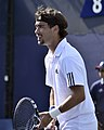 2013 US Open (Tennis) - Fabio Fognini (9664846606).jpg