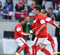 2014-05-30 Austria - Iceland football match, pre-game 0120.jpg