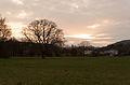 20140326174906 Breitenfurt EVN-Eiche 4287.jpg