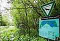 2015 05 24 Deutschland Baden-Württemberg Landkreis Sigmaringen Naturschutzgebiet Zielfinger Vogelsee (1).jpg