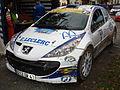 207 S2000 Jerome Galpin Automne 2010.jpg