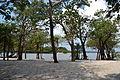 21- Lago do Batata Reserva Biológica do rio Trombetas Pará - foto de Carolina de Melo Franco.JPG