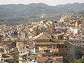 28 San Martín i el barri vell des del Castell.jpg