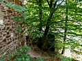 29-07-10-Itterburg-DSCF3294.jpg