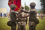 3D Marine Regiment Change of Command Ceremony 2015 150717-M-QH615-059.jpg
