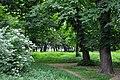 46-112-5002 Stryi Nyzhankivski Park RB 18.jpg