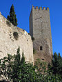 464 Torre mestra del castell de la Suda (Tortosa).JPG
