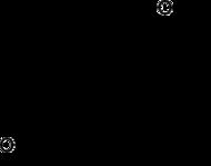 Skeletformulo de 5α-dihydroprogesterone
