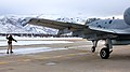 514th Flight Test Squadron - A-10 FCF.jpg
