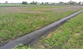 Cihtong Rural township