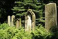9825viki Cmentarz żydowski na Ślężnej. Foto Barbara Maliszewska.jpg