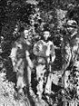 AWM 027085 Japanese prisoner captured near Menari.jpg