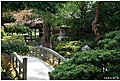 A Garden In The Kyoto Imperial Palace (31127627).jpeg