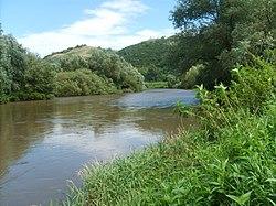 A Sajó folyó Sajónémetinél.JPG