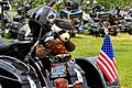 A Teddy Bear sits on a motorcycle after its rider completed the Rolling Thunder event, 2011.jpg