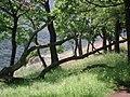 A Vadálló-kövek felé - panoramio.jpg