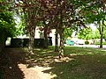 A corner of the Westley estate - geograph.org.uk - 1861635.jpg
