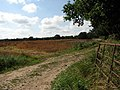 A farm track near Silvergate - geograph.org.uk - 553890.jpg