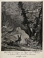 A hare with abnormal teeth in a forest clearing. Etching by Wellcome V0021021.jpg