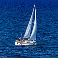 A sailboat visible from the Nanaimo to Horseshoe Bay ferry, 2019 (49108712732).jpg