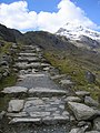 A walk up the Pyg track - more stone steps - geograph.org.uk - 768807.jpg