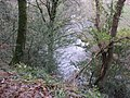 Above the River Teign, near Dunsford - geograph.org.uk - 1606784.jpg