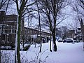 Abtwoudsepark - Delft - 2009 - panoramio - StevenL.jpg