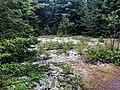 Acadia National Park, Maine (c595bd9c-618a-4fde-8926-45a613a4c9af).jpg