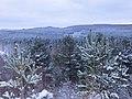 Across the snowy forest - Jan 2013 - panoramio.jpg