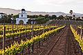 Adobe guadalupe winery 2.jpg