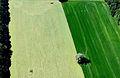 Aerial Twente (6775442146).jpg