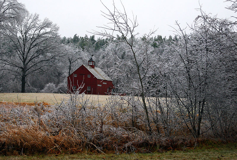 File:After an ice storm, Boxborough, Massachusetts, 2008.jpg