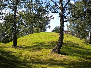 Agne - King Agni's Barrow just southeast of Sollentuna Station in Sweden.