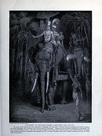 Ajatashatru of Magadha makes a midnight call.jpg