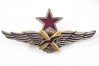 Spanish Republican Air Force - Image: Alas FARE piloto caza