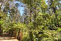 Alfred Nicholas Memorial Gardens (10220329765).jpg