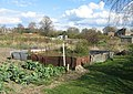 Allotments - More's Meadow - geograph.org.uk - 767335.jpg