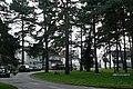 Almswood Road - geograph.org.uk - 1202432.jpg