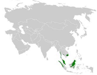 Ochraceous bulbul - Image: Alophoixus ochraceus distribution map