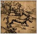 Amand-durand, il maiale mostruoso (da dürer), 1850-1900 ca., eliografia (coll. gollini).jpg