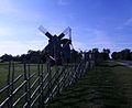 Angla windmills in Saaremaa island.JPG